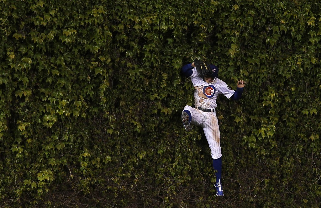 Chicago Cubs center fielder Tony Campana leaps into the ivy but can't catch St. Louis Cardinals left fielder Matt Holliday's two-run home run in the eighth inning at Wrigley Field on April 24, 2012. Photo by Brian Cassella/Chicago Tribune/MCT via Getty Images