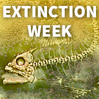 Extinction Week logo