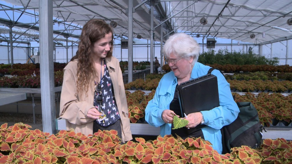 University of Florida alum Judy Plaut, 70, and current student Gabby Nease examine plants in one of the greenhouses on the Gainesville, Fla., campus. Video still by Steve Mort/PBS NewsHour