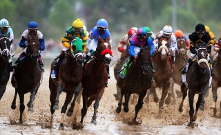 The field races down the front stretch during the 2013 Kentucky Derby. Photo by Andy Lyons/Getty Images