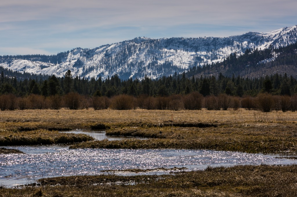 The mountains, trees and meadows surrounding this famous high-elevation lake suffered from the effects of an extended drought as viewed on March 17 in South Lake Tahoe, California, with 2013 the driest year in recorded history. Photo by George Rose/Getty Images