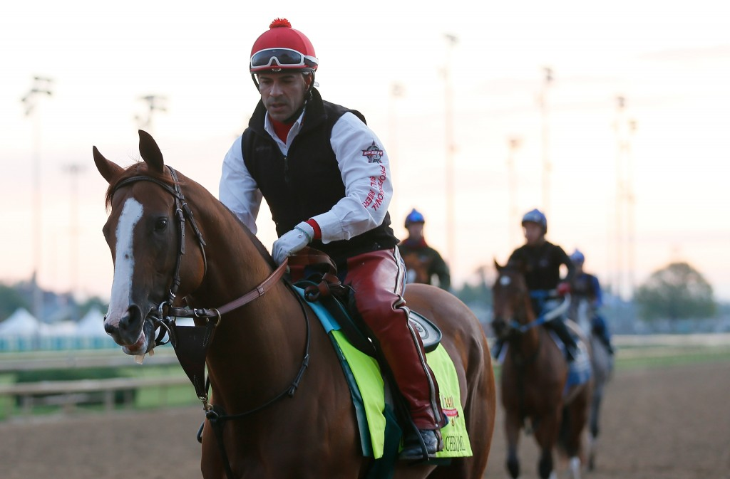 Kentucky Derby contender California Chrome works during early morning workouts at Churchill Downs on May 1, 2014. California Chrome is a 5-2 odds favorite to win the 2014 Derby. Photo by Kevin C. Cox/Getty Images