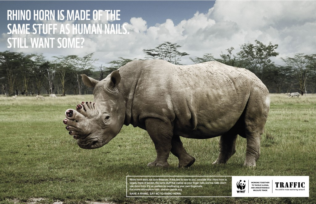 wwf_rhino_r_06small_edit