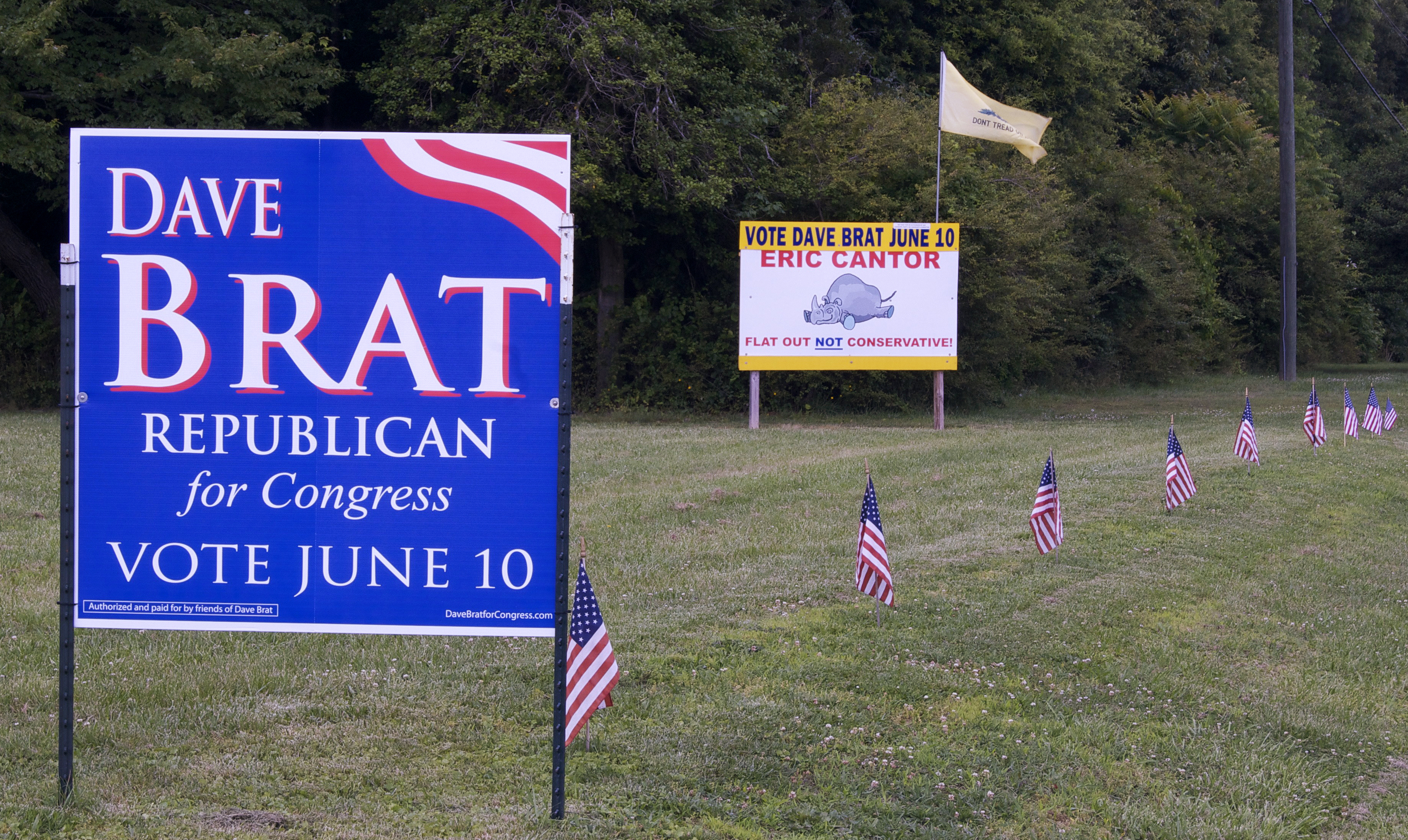 Drivers on Route 301 in Virginia's Hanover County can see competing signs for the Republican primary in Virginia's 7th Congressional District. Photo by Rachel Wellford