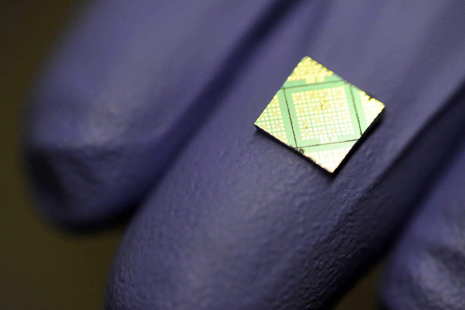 A scientist at the University of Southern California holds a chip containing bacteria cells that are the basis for their research involving biological electron transport. Scientists at USC are doing basic research to determine how certain bacteria are able to transfer electrons great distances from themselves to other cells or inorganic minerals. Photograph by Kent Treptow for PBSNewsHour