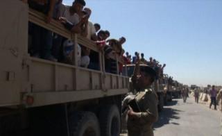 iraqivolunteers