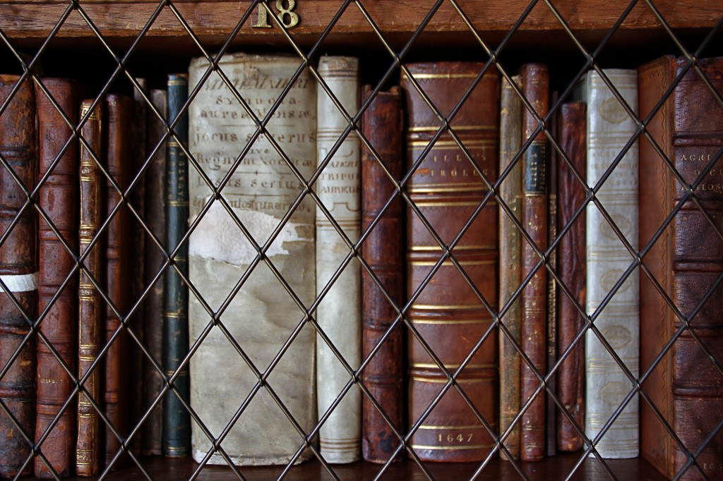 Some of the 9,000 books in Sir Walter Scott's library at Abbotsford. Image by Lorna Baldwin.