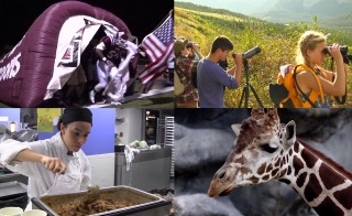 PBS NewsHour's Student Reporting Labs looked for science in their communities. From climate change and unreported concussions to controversial breeding programs and cafeteria nutrition science, these are their stories.