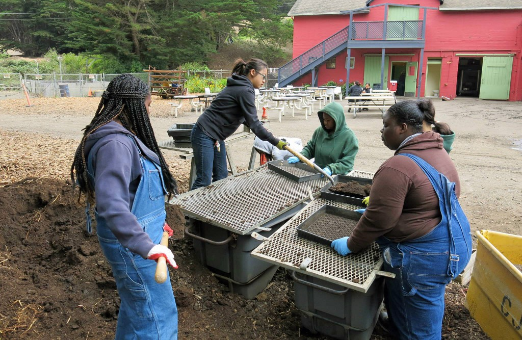 More than 300 high school-aged teens took part in the summer program in 2014. Photo courtesy of The Garden Project