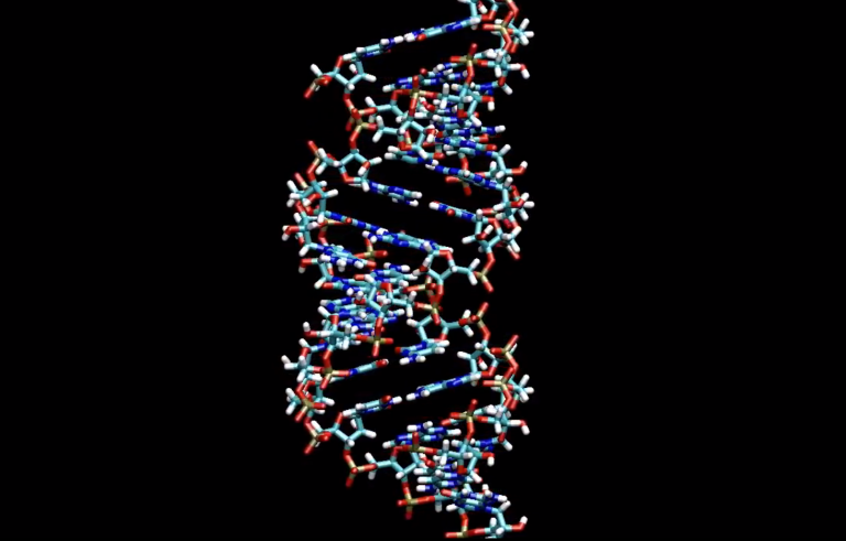 Scientists at the Center for Chemical Evolution are breaking apart early molecules to determine how RNA and DNA formed. Courtesy Science Nation/National Science Foundation