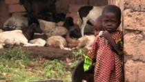 ebola_orphan2