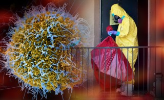 ebolaebola