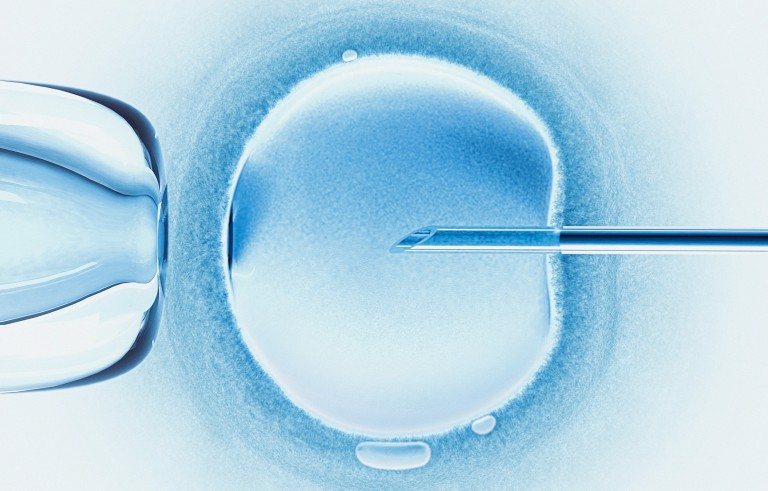 This illustration shows in vitro fertilization, in which a single sperm is injected into the cytoplasm of an egg. Image by Brand X Pictures and Getty Images.