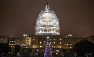 The U.S. Capitol Christmas Tree is seen after it was lit during a ceremony in Washington, D.C. on Dec. 2, 2014. Photo by Samuel Corum/Anadolu Agency/Getty Images