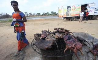 A woman walks past dried bushmeat near a road of the Yamoussoukro highway March 29, 2014. Bushmeat --from bats to antelopes, squirrels, porcupines and monkeys -- has long held pride of place on family menus in West and Central Africa. Researchers from the Robert Koch Institute in Germany said the outbreak could have started with bats, but not because they were eaten. Photo by Thierry Gouegnon/Reuters