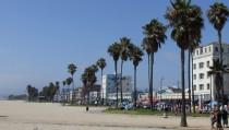 SILICON BEACH monitor  venice beach