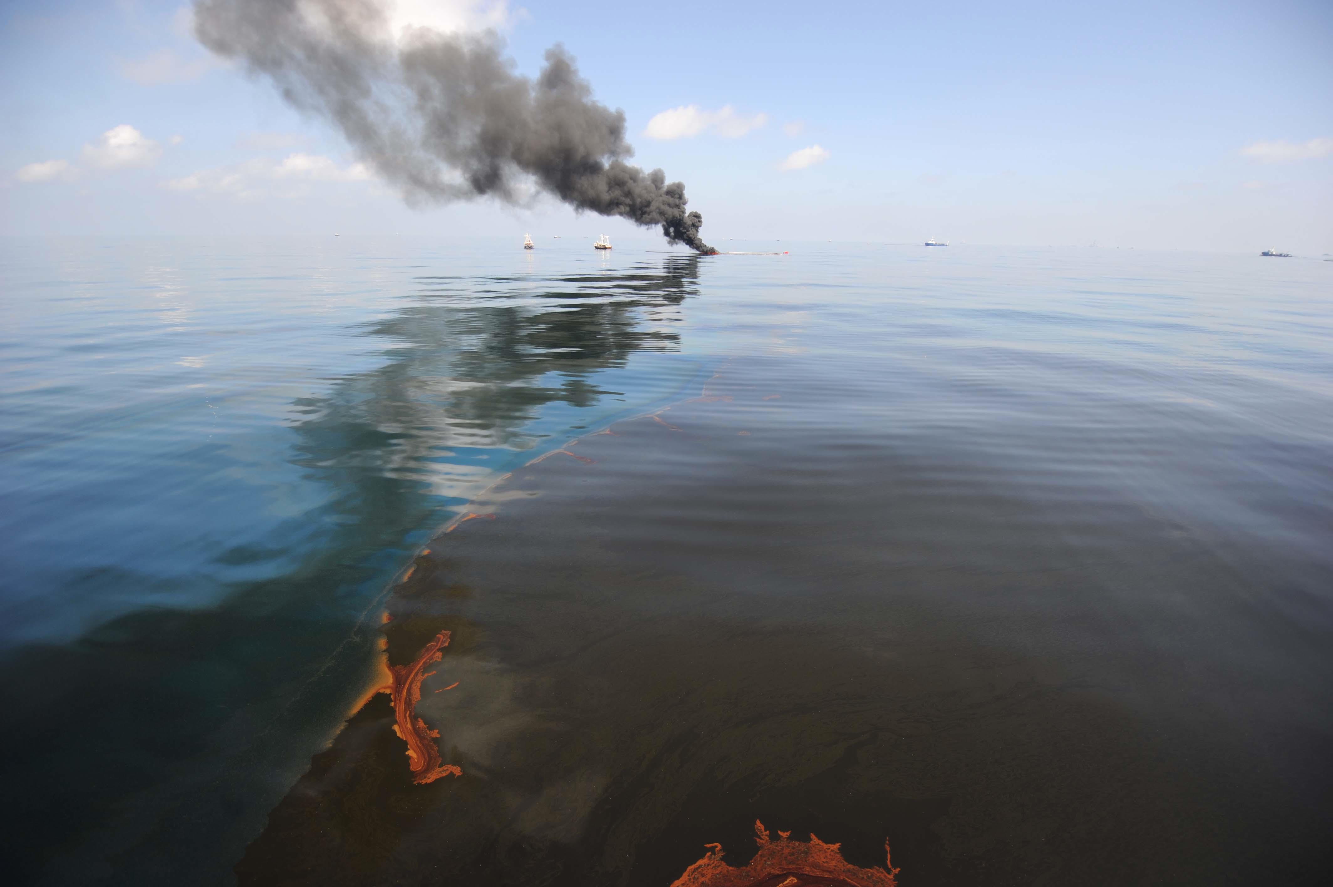 Essay On Oil Spills  Bp Essay On Oil Spills