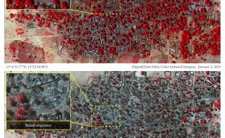 The top photo is a satellite image of the village of Doro Baga in northeastern Nigeria taken on Jan. 2. The red areas indicate healthy vegetation. The bottom image was taken on Jan. 7 and shows almost all of the structures razed. Photos by DigitalGlobe