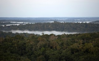 A view is seen from the Amazon Tall Tower Observatory (ATTO) in Sao Sebastiao do Uatuma in the middle of the Amazon forest in Amazonas state January 8, 2015. Photo by Bruno Kelly/Reuters