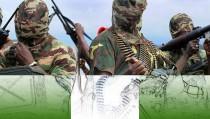 TERROR IN NIGERIA monitor boko haram