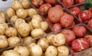 White and Red potatoes for sale at the U.S. Department of Agriculture Farmer's Market in Washington, D.C. Photo by Ken Hammond/USDA