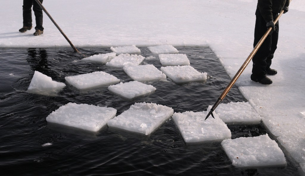 People use pick poles to guide ice blocks to the galamander they use to lift the ice blocks from the water.  With the exception of a few munites use of a chainsaw the ice harvesting tools used by  the crew are the same as they would have been in the 1930's. Photo by Gabor Degre/Bangor Daily News