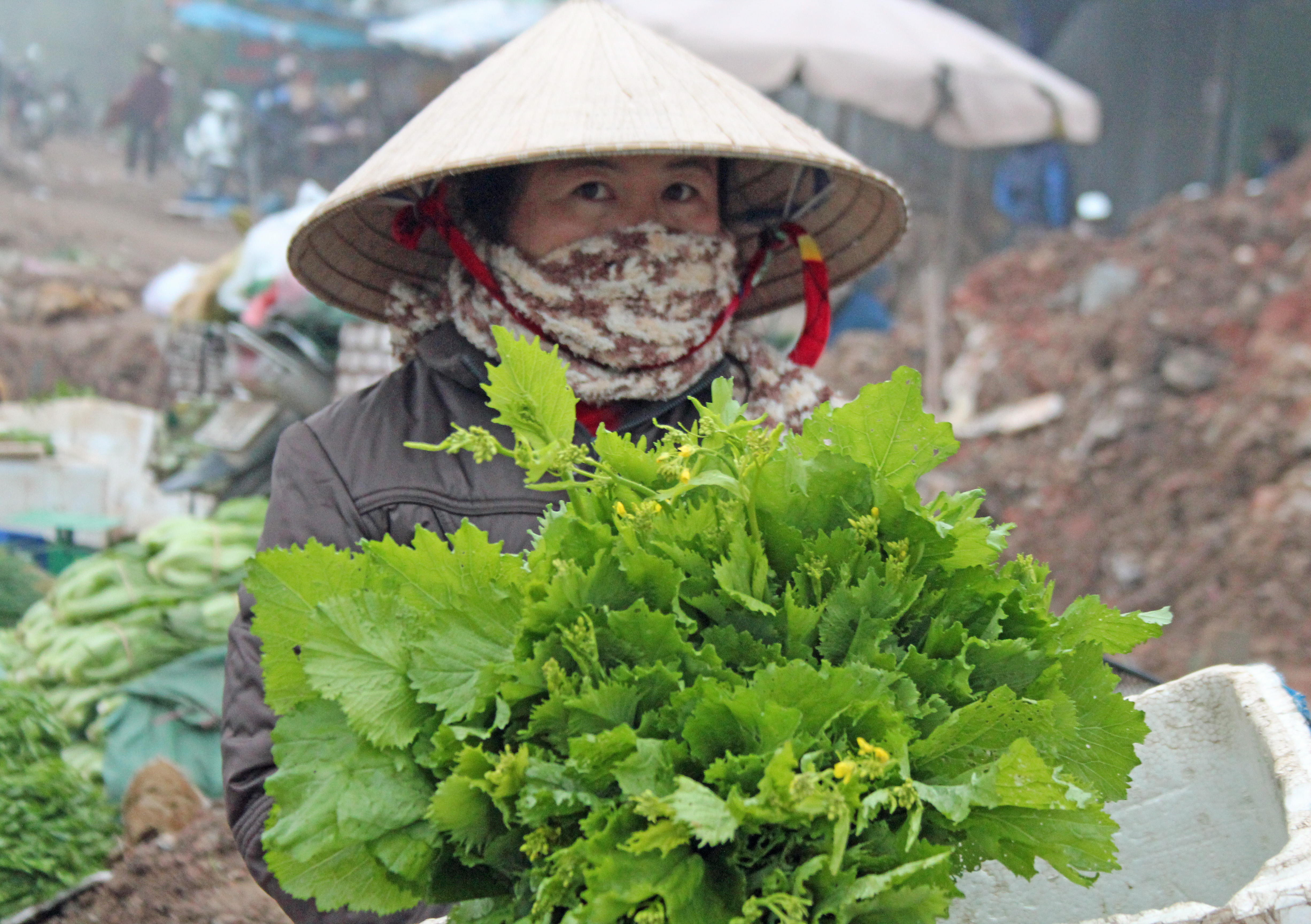 A daily morning market in Dien Bien Phu Province has a variety of produce. Photo by Larisa Epatko/PBS NewsHour