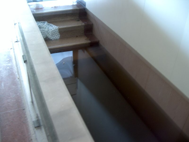 The Basement This stairwell led to the basement of the hospital from the first floor. Floodwaters never reached the full first floor of the building. -- Photo by Mooney Bryant-Penland