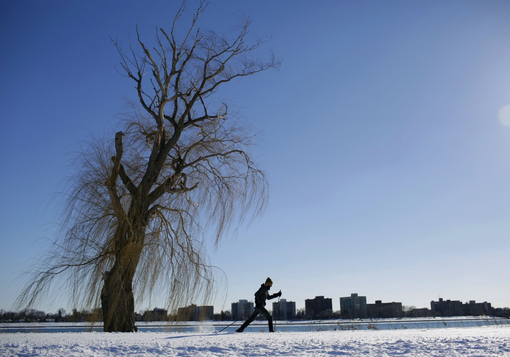 DETROIT, MI - FEBRUARY 2: A man cross country skis along the Detroit River on Belle Isle February 2, 2015 in Detroit, Michigan. Detroit received over a foot of snow during a storm that has crippled much of the Midwest canceling thousands of flights around the country. (Photo by Joshua Lott/Getty Images)