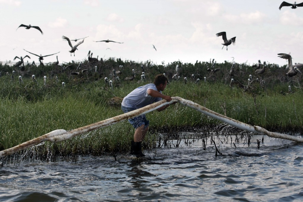 Trying to Stop the Oil A Plaquemines Parish employee lays oil-absorbing boom as pelicans leave their nests on an island in Barataria Bay, May 22, 2010. (AP Photo/Gerald Herbert)