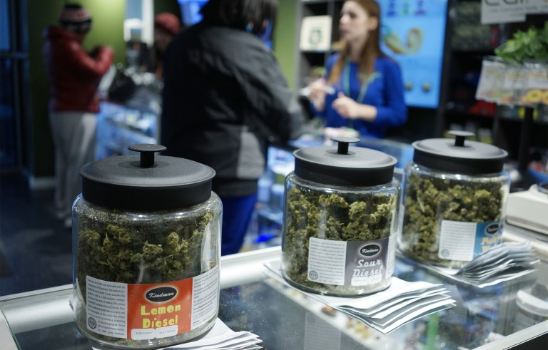 """Customers shop for """"Green Friday"""" deals at the Grass Station marijuana shop on Black Friday in Denver, Colorado November 28, 2014. Colorado's revenue division released a report on the state's first year of legal recreational marijuana sales Friday."""