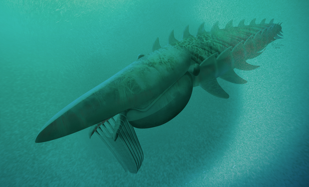 Giant Prehistoric Sea Creatures At seven feet long  the giant