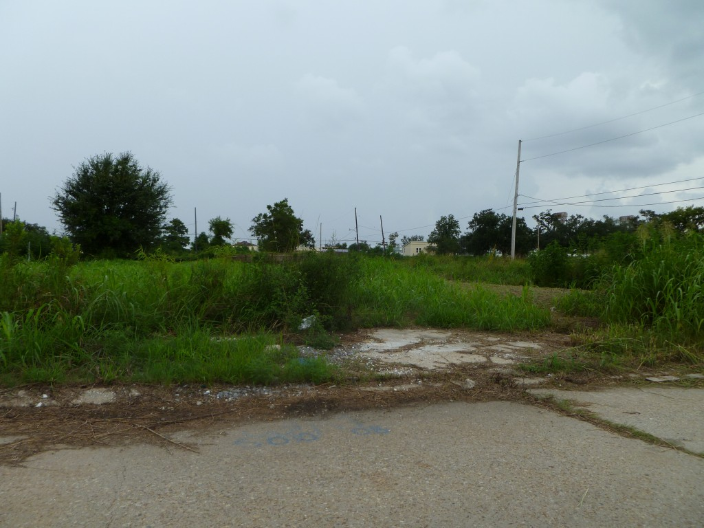 The Rest of the Neighborhood Outside of bright spots of the Make it Right homes and Musician's Village, few residents have returned to the Ninth Ward. (Photo by Betty Ann Bowser)
