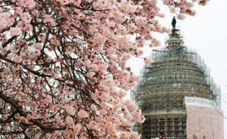Photo of U.S. capitol by Paul J. Richards/AFP/Getty Images