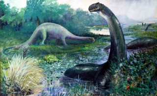A newly-published study believes that the dinosaur currently known as Apatosaurus excelsus should be restored to its original name of Brontosaurus. Painting of Brontosaurus excelsus by Charles R. Knight, 1897