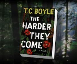 tc boyle book cover