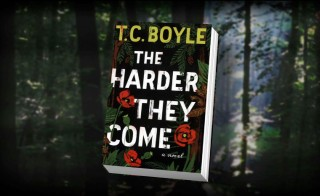 tc boyle book cover