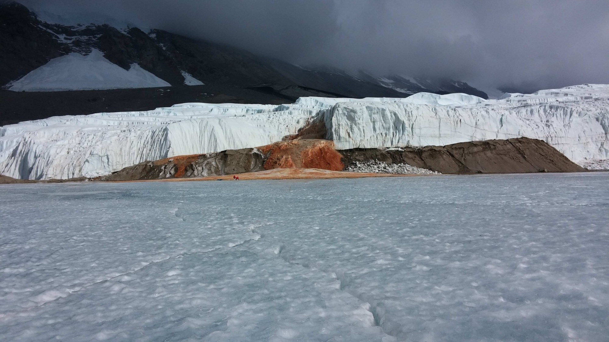 Blood Falls, the unique red-hued liquid emerging from below the surface of Antarctica's dry valleys is connected to brines beneath, according to recently published findings. Credit: Jill Mikucki, 2014.
