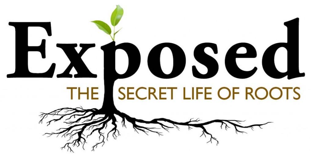 Exposed Logo B