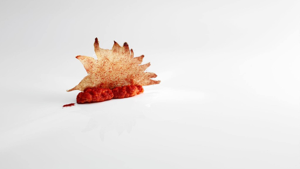 Cookie crest and corals. Comb and biscuit coral. Gandor cookie itsas eta krema. Photo from Mugaritz's Facebook page.