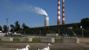 "NEWBURG, MD - JUNE 29:  Two white ducks walk along the beach at Aqualand Marina as emissions spew out of a large stack nearby at the coal-fired Morgantown Generating Station on the Potomac River on June 29, 2015 in Newburg, Maryland. Today the U.S. Supreme Court ruled against the Environmental Protection Agency's (EPA) effort to limit certain power plant emissions -- saying the agency ""unreasonably"" failed to consider the cost of the regulations.  (Photo by Mark Wilson/Getty Images)"