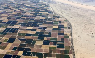 Agricultural farm land is shown next to the desert in the Imperial valley near El Centro, California on May 31, 2015. California is enduring its worst drought on record. Photo by Mike Blake/Reuters