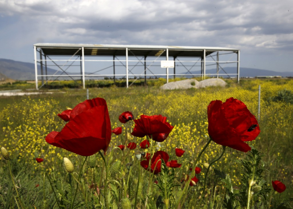 Poppies are seen near a deserted metal construction close to the town of Larissa in Thessaly region, Greece April 22, 2015. Photo by Yannis Behrakis/Reuters