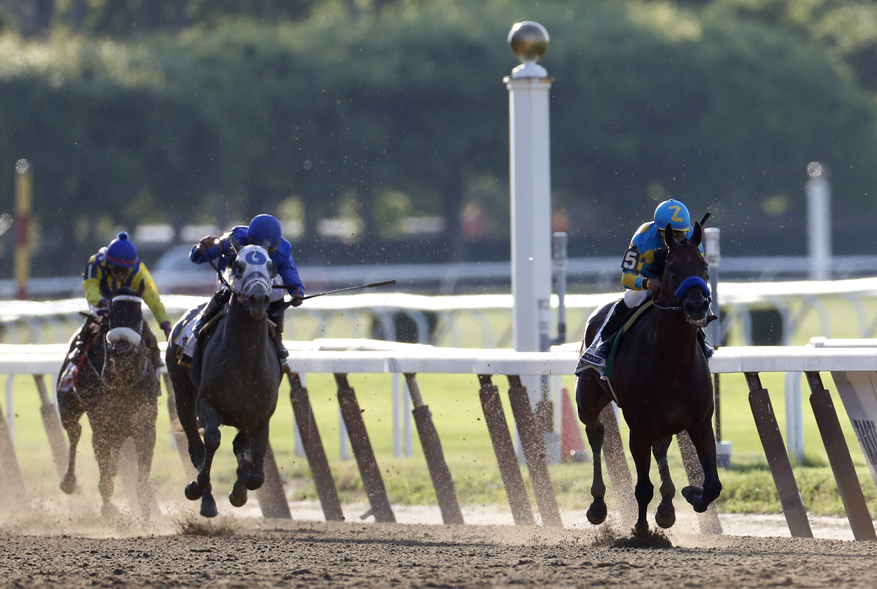 American Pharoah leads the pack en route to winning the 147th running of the Belmont Stakes. Photo by Shannon Stapleton /Reuters