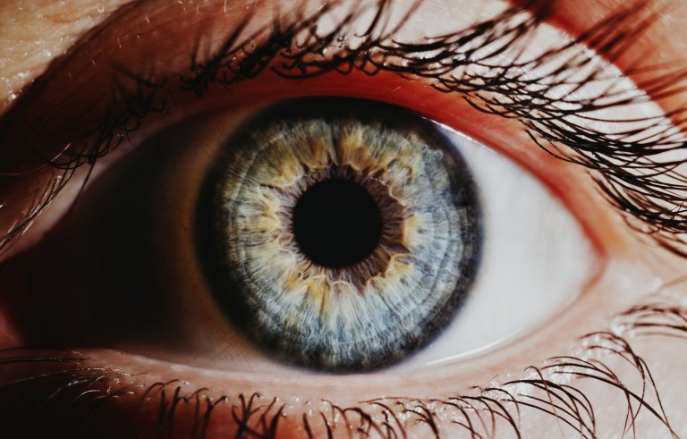 A new study reports a natural compound that can clear up cataracts. Photo by WIN-Initiative/Getty Images.