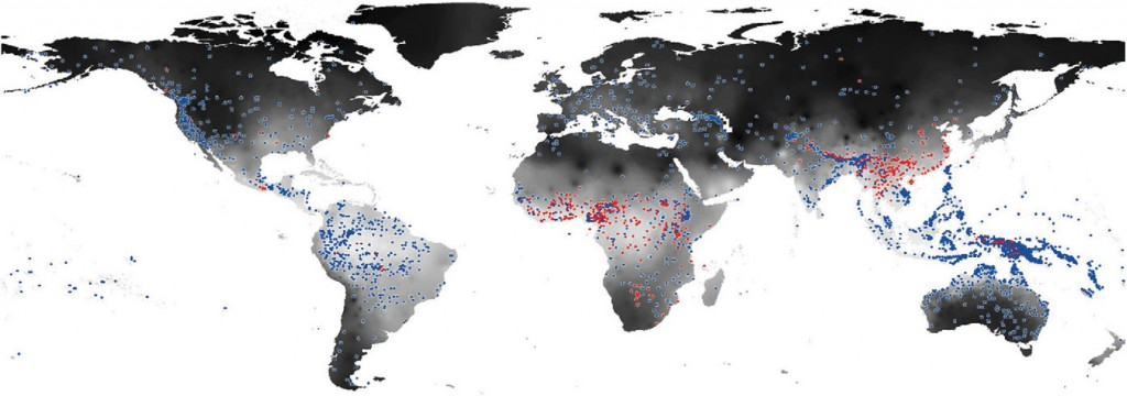 Distribution Of Tonal Languages (red Dots) And Non Tonal Languages (blue  Dots