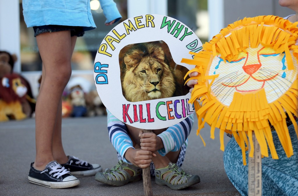 A girl holds a sign at the doorway of River Bluff Dental clinic in protest against the killing of a famous lion in Zimbabwe, Bloomington, Minnesota, July 29, 2015. The lion's death at the hands of a Minnesota dentist has brought attention to the practice of trophy hunting. Photo by Eric Miller/Reuters