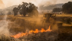 A bulldozer battles a spot fire at the Rocky Fire in Lake County, California July 30, 2015. The Rocky Fire broke out on Wednesday afternoon in Lake County, 110 miles (180 km) north of San Francisco. By Thursday morning it had spread to 8,000 acres (3,237 hectares), according to the California Department of Forestry and Fire Protection, known as Cal Fire.  REUTERS/Max Whittaker? - RTX1MHKG