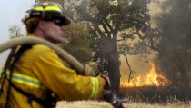 A firefighter keeps watch on flames from the Jerusalem Fire in Lake County, California August 13, 2015. Firefighters kept battling blazes across drought-parched California on Thursday, and thousands of them made solid progress against a wildfire that has forced 150 people to evacuate homes outside of San Francisco. Firefighters had drawn containment lines around about 33 percent of the so-called Jerusalem Fire, which grew overnight to cover 23,500 acres (9,510 hectares) by Thursday morning, according to the California Department of Forestry and Fire Protection (Cal Fire).REUTERS/Robert Galbraith - RTX1O6T0