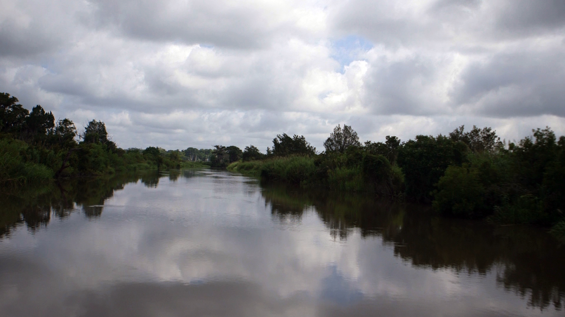 Altamaha river. Photo by Mike Fritz
